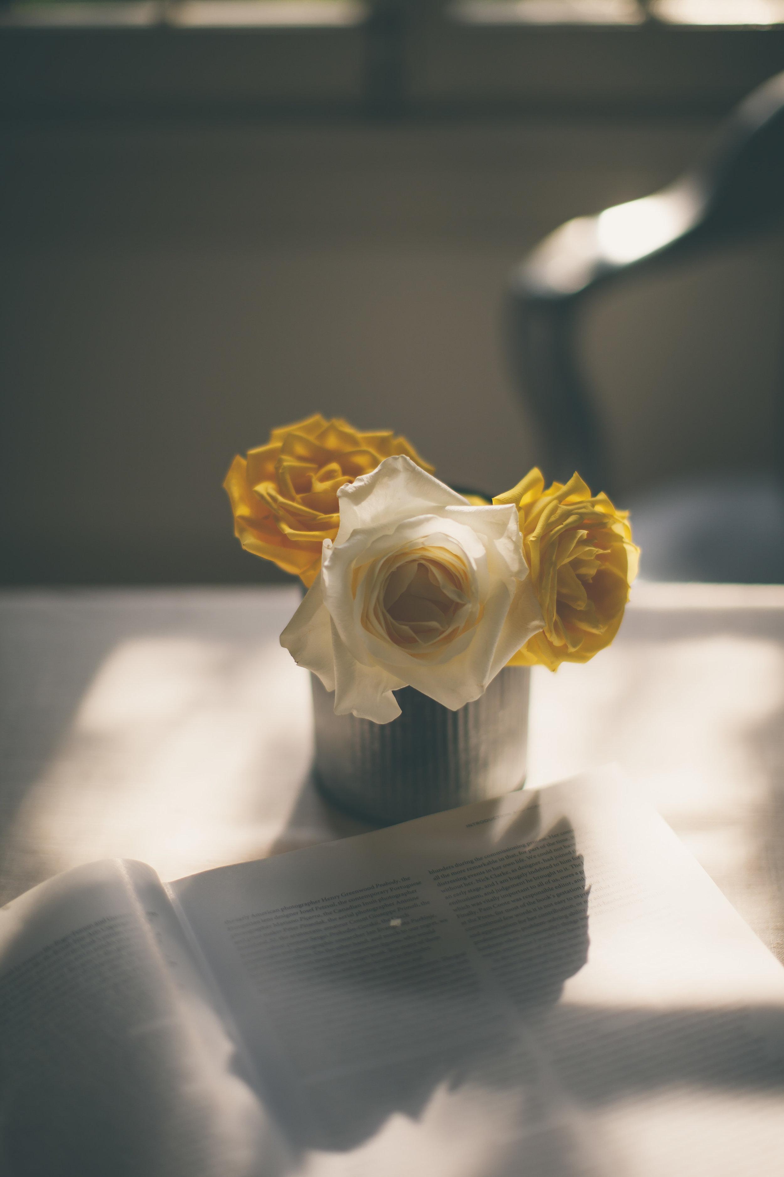 Creamy Roses-9808.jpg