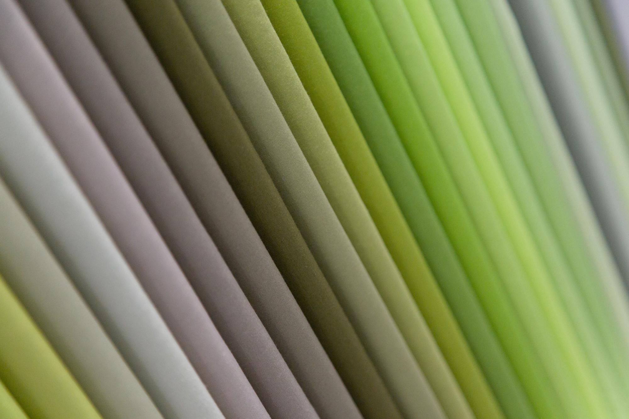 RK_QMfall17_Kona colors wall_04.jpg
