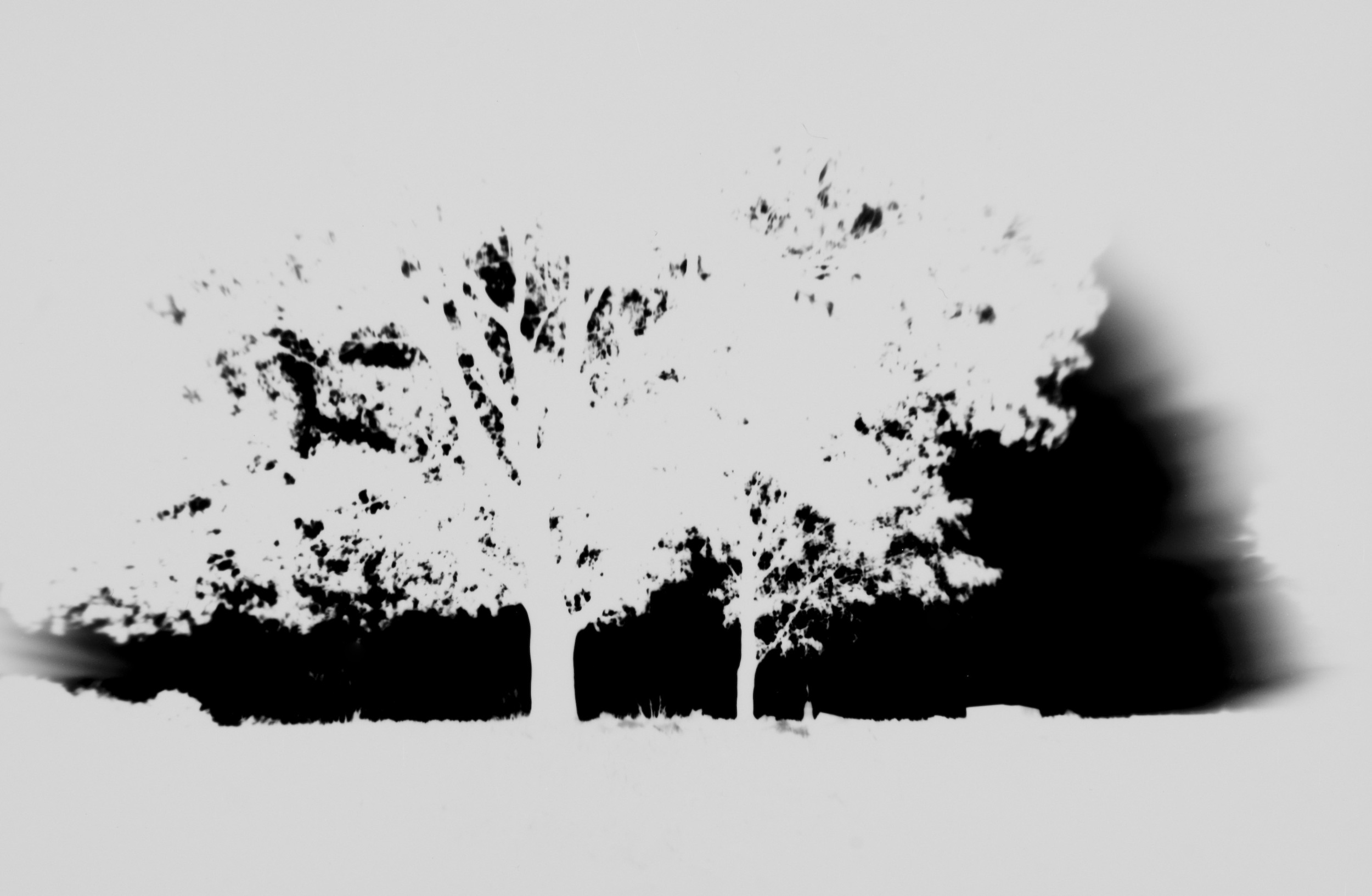 24_Lastscape_(paper_negative).jpg