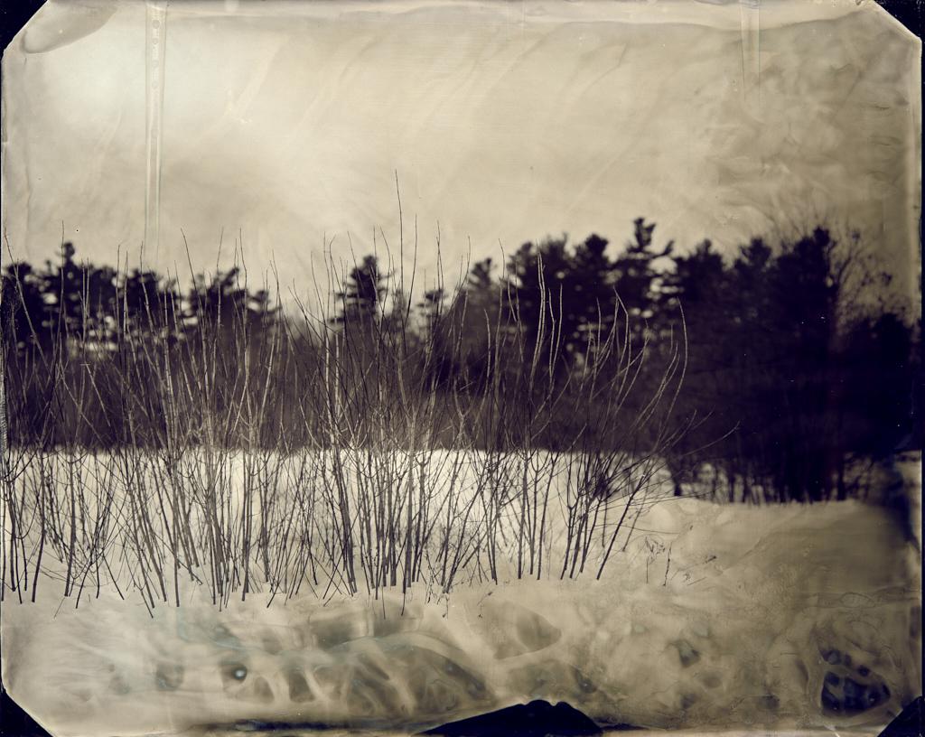 SNOW_WORMS.jpg