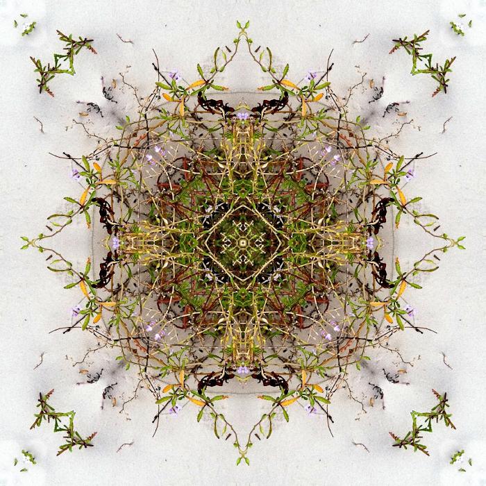 mbain_Kaleidascope_022.jpg