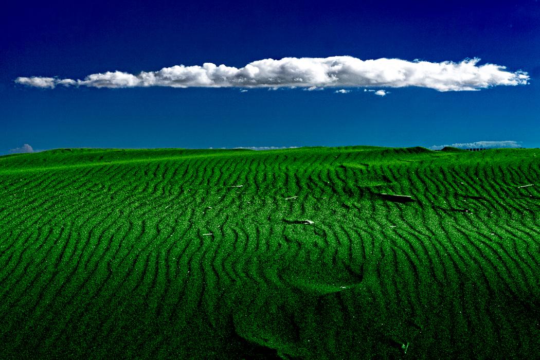 mbain_The Great Green Desert of Shonan.jpg