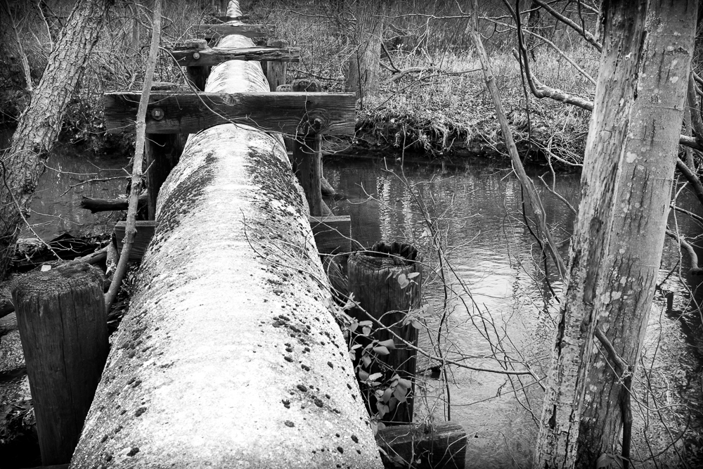 The Sewer Pipe
