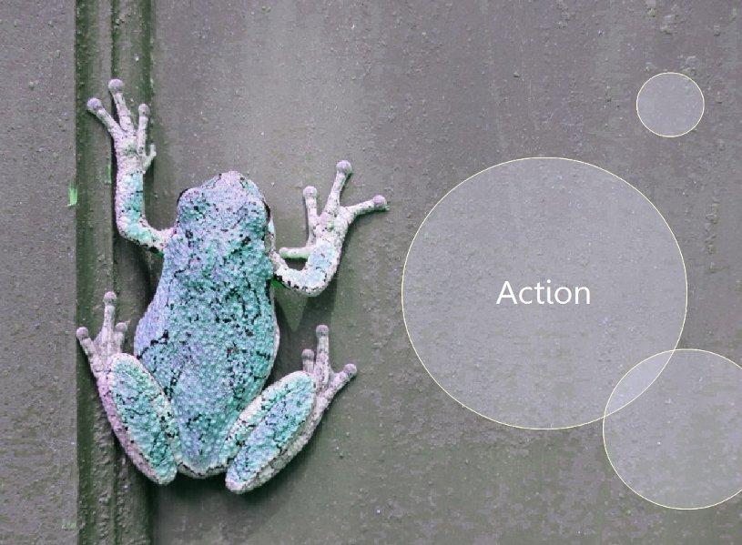 Frog_Action.jpg