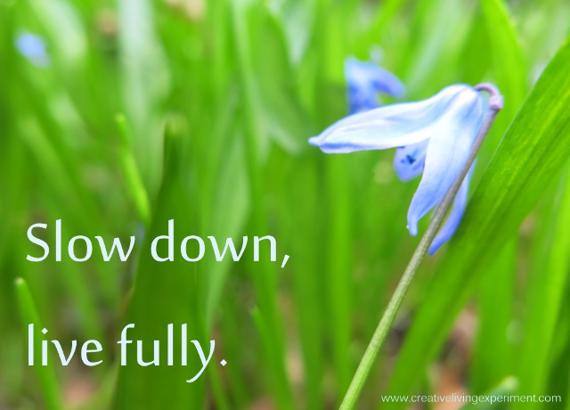 SlowDownLiveFully