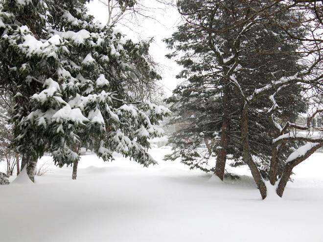 SnowstormFrontDoorView