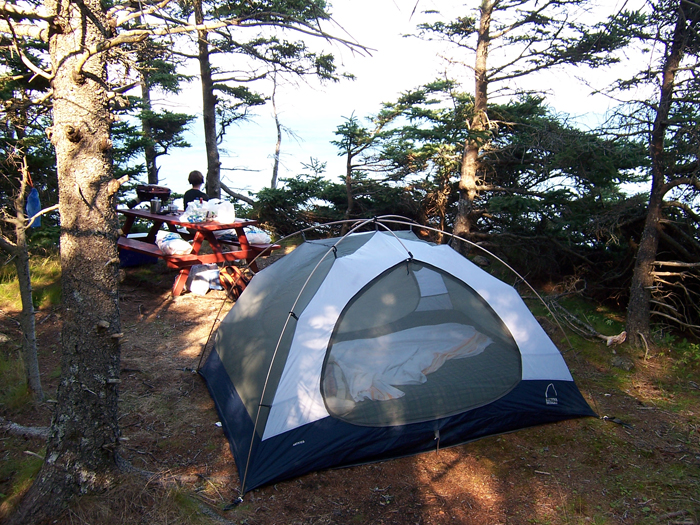 """Cliff side"" camping on Grand Manan Island, NB, in 2007. That night we drank wine and watched whales swim in front of our campsite."