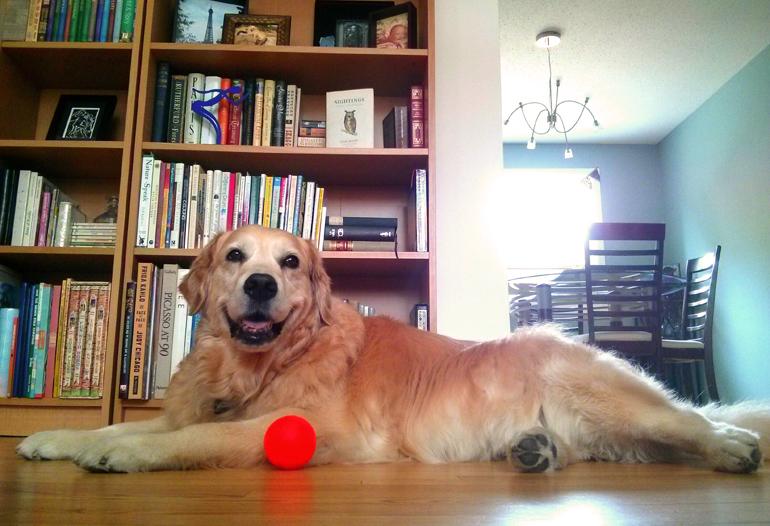 She loved orange balls.