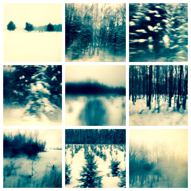 Winter from a moving train. Trees. Mobile photography series. January 2019.