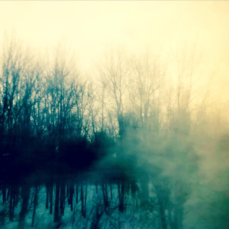 WinterTrainTrees8_770px(E9826).jpg
