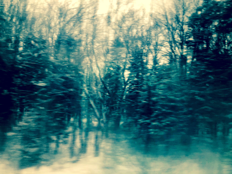 WinterTrainTrees7_770px(E9557).jpg