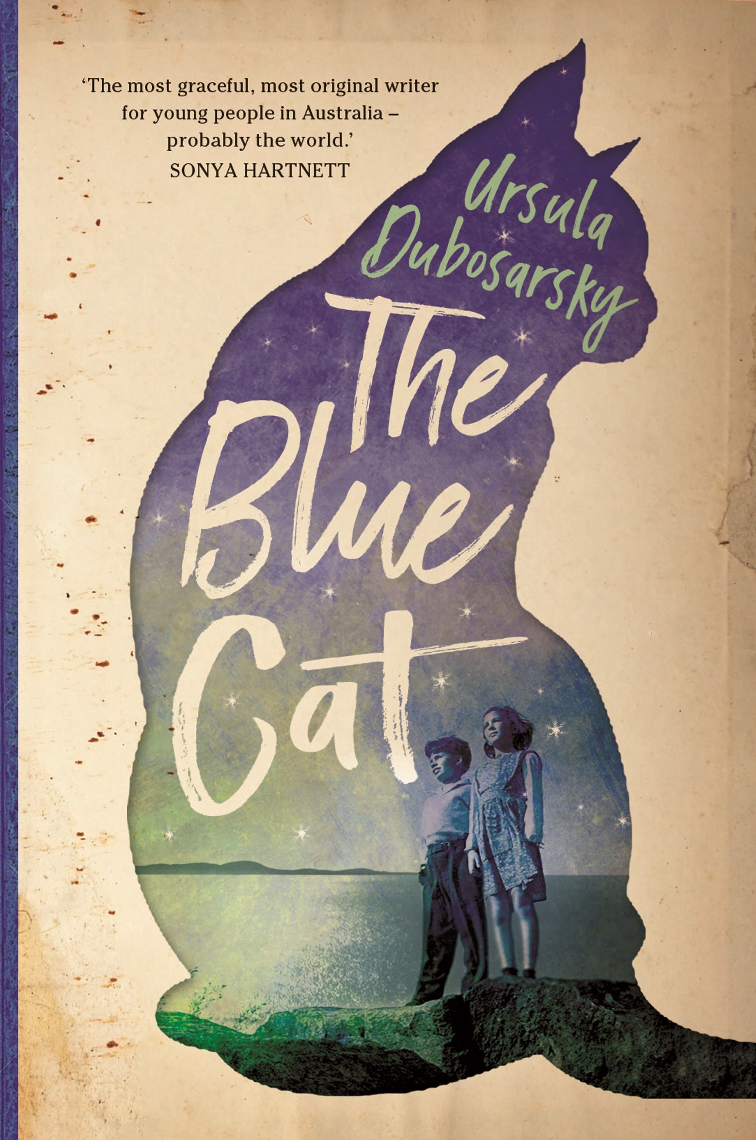 blue cat cover 1.jpg