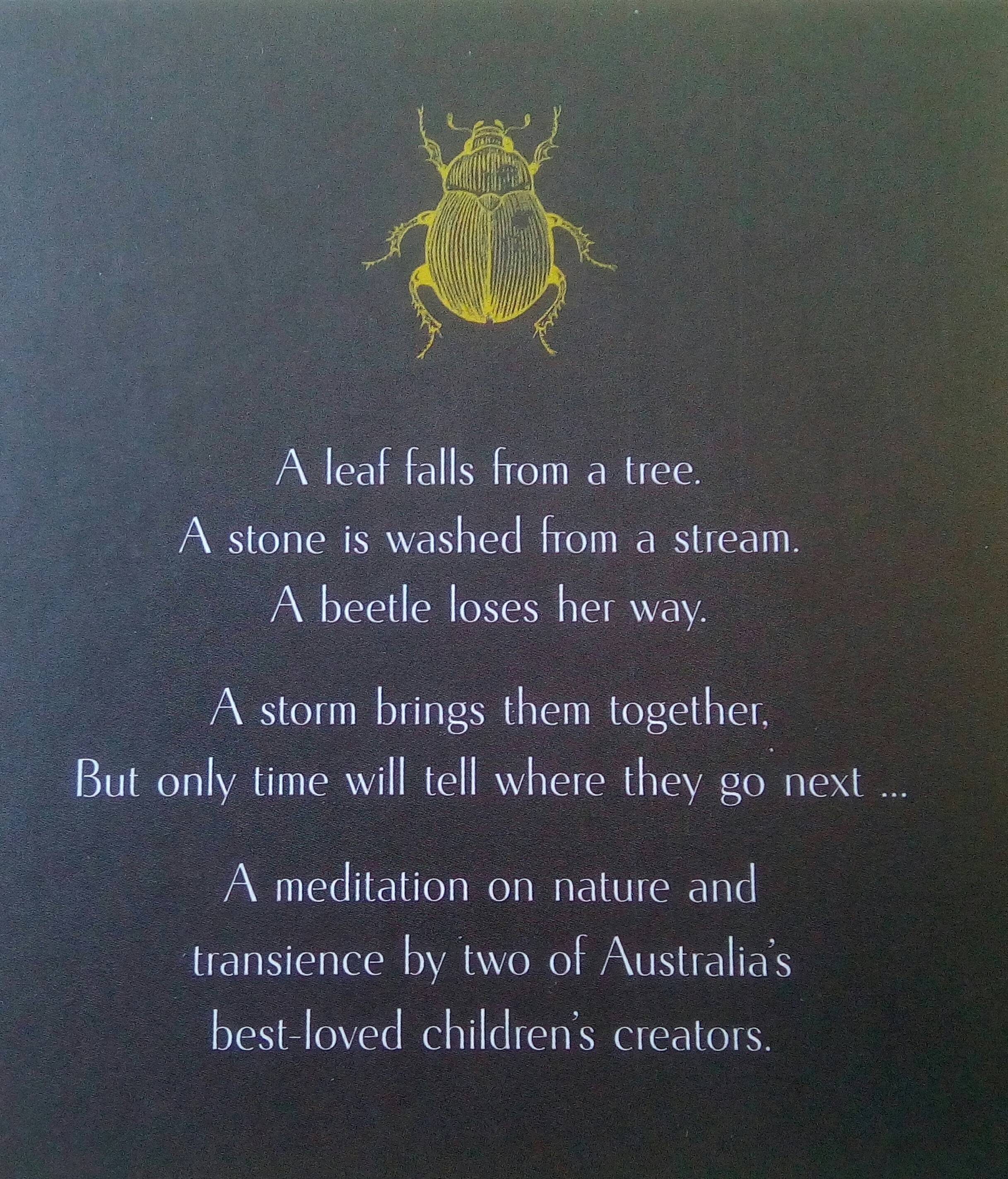 Leaf Stone Beetle back cover.JPG