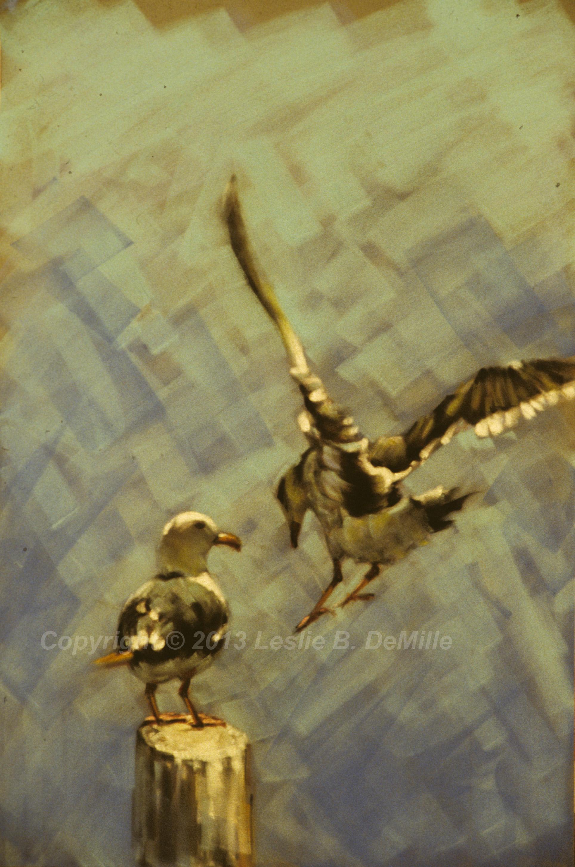 Bird in Flight, Oil 1985 (11x16)