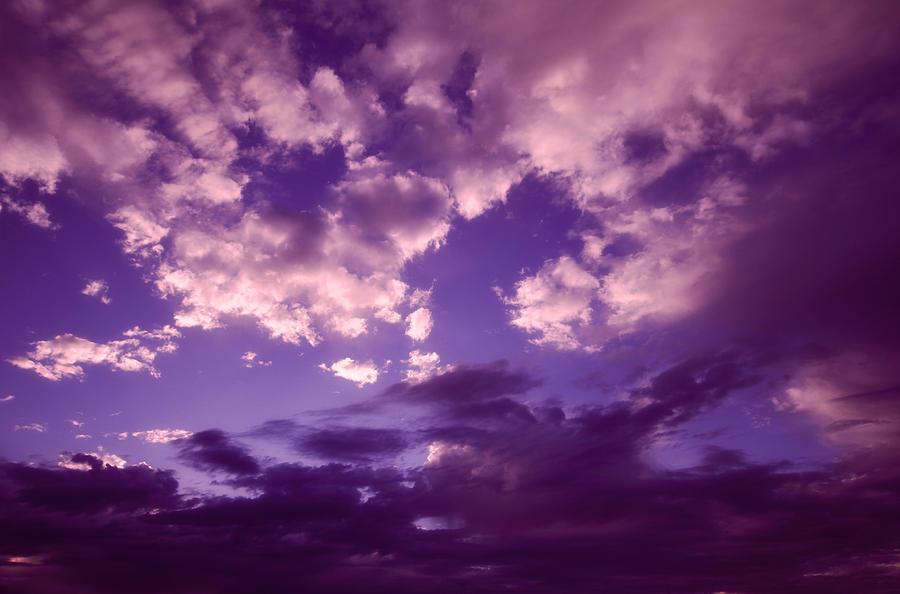 purple-clouds-ariane-moshayedi.jpg