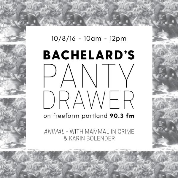 Bachelard's Panty Drawer — Felicity Fenton