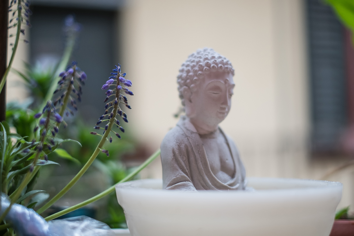 Buddha watches over Richard's balcony garden.