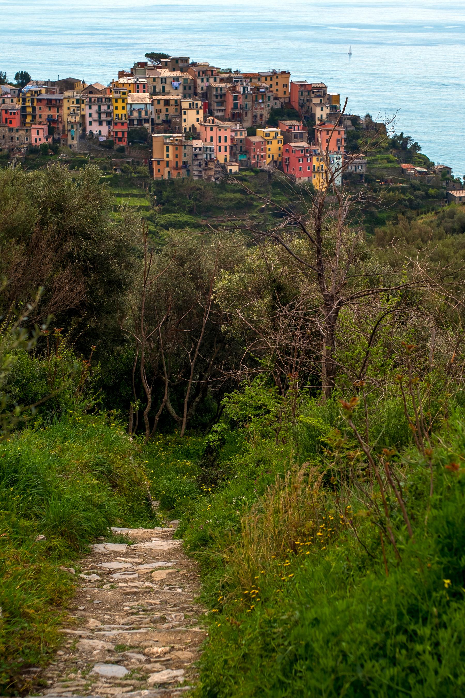 """The view of Corniglia via the Sentiero Azzuro, or the Blue Trail. Located in the Italian r      egion of   Liguria , the trail links the five villages of the Cinque Terre (which means """"Five Lands"""") including Riomaggiore , Manarola , Corniglia , Vernazza and Monterosso."""
