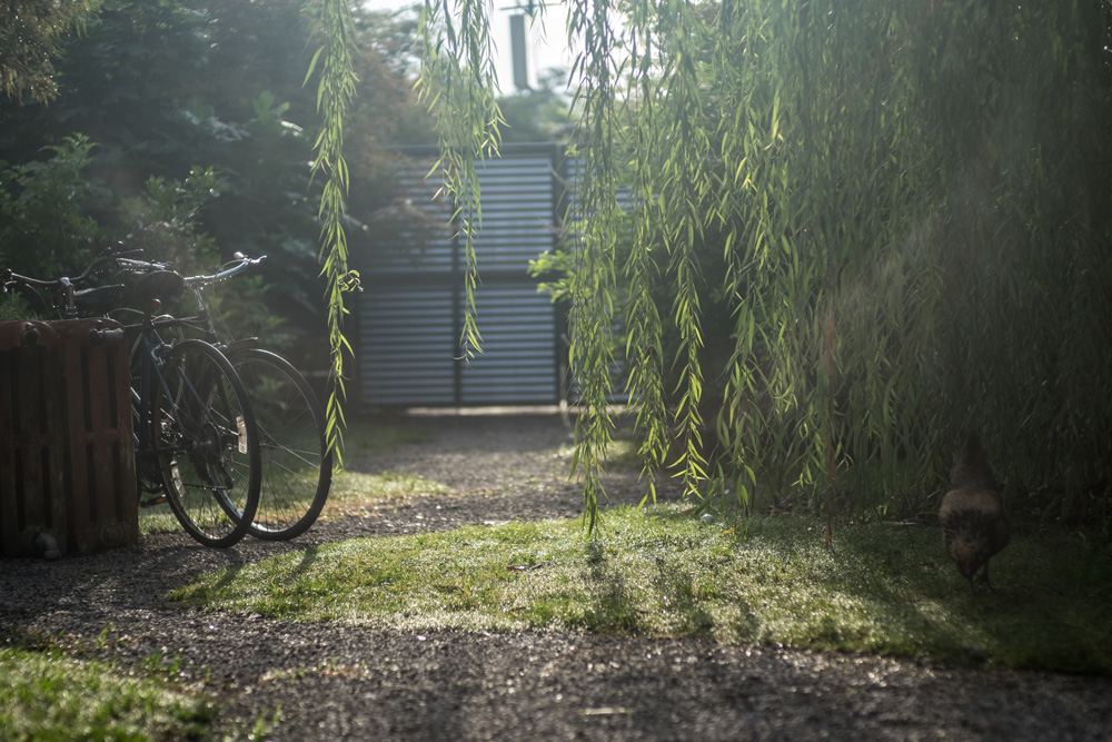 The private garden entrance of our solar-powered, airbnb home away from home in the St Roch / Bywater district of New Orleans.