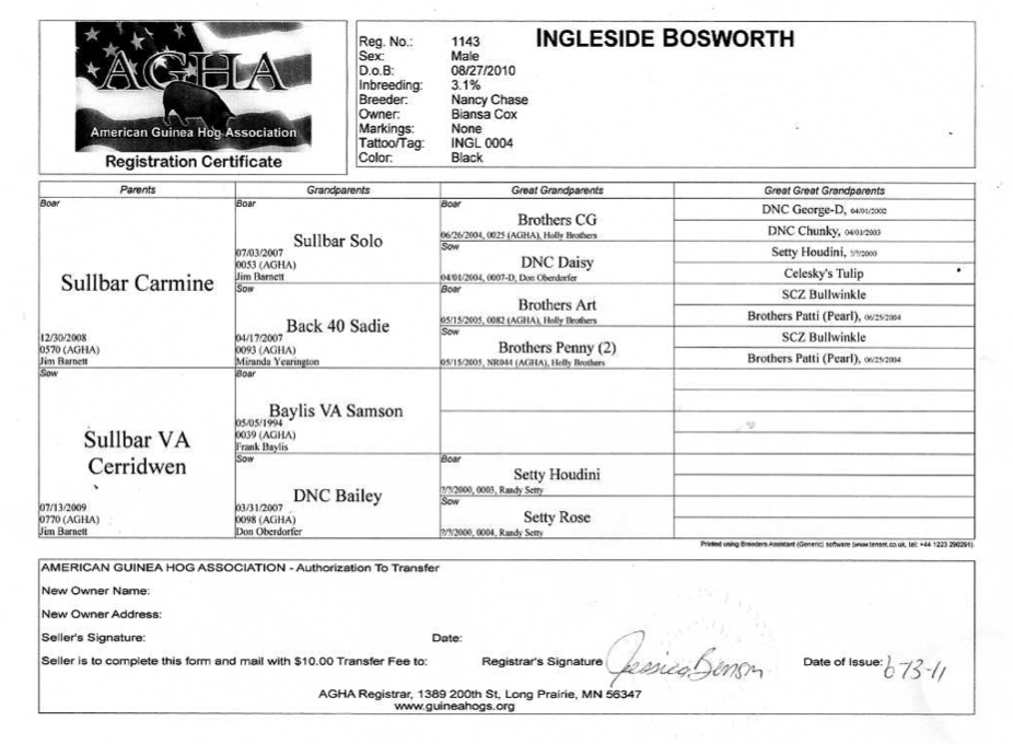 Bosworth Pedigree.jpg