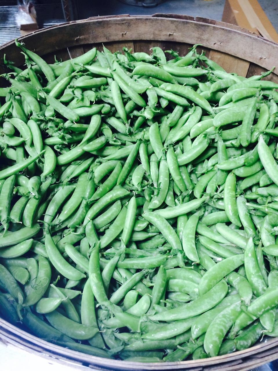 Our Sugar Snap Peas