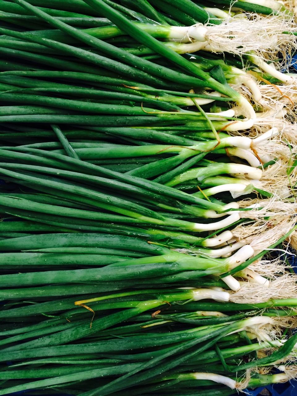 Vibrant Spring onions