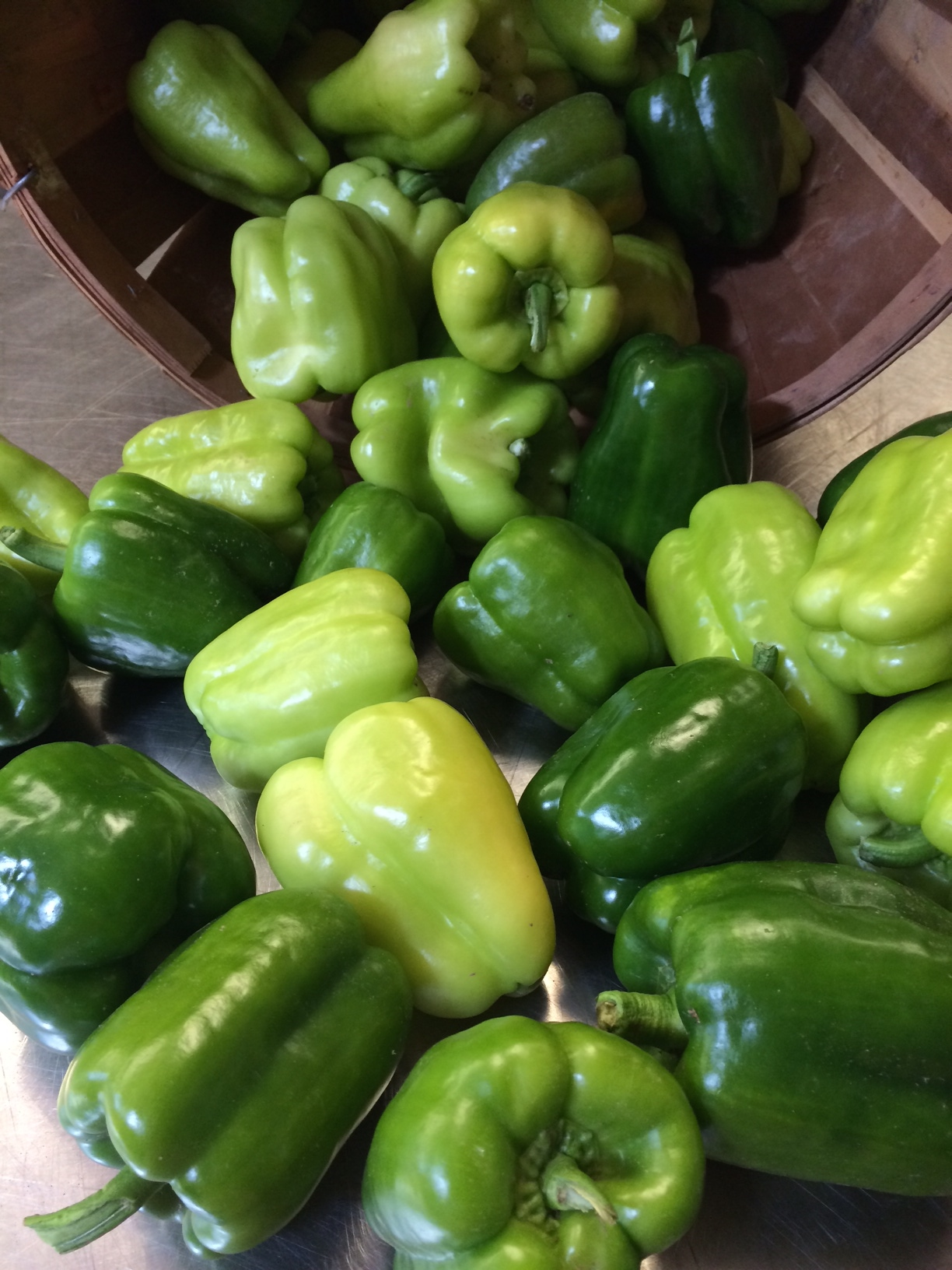 Green peppers at their peak