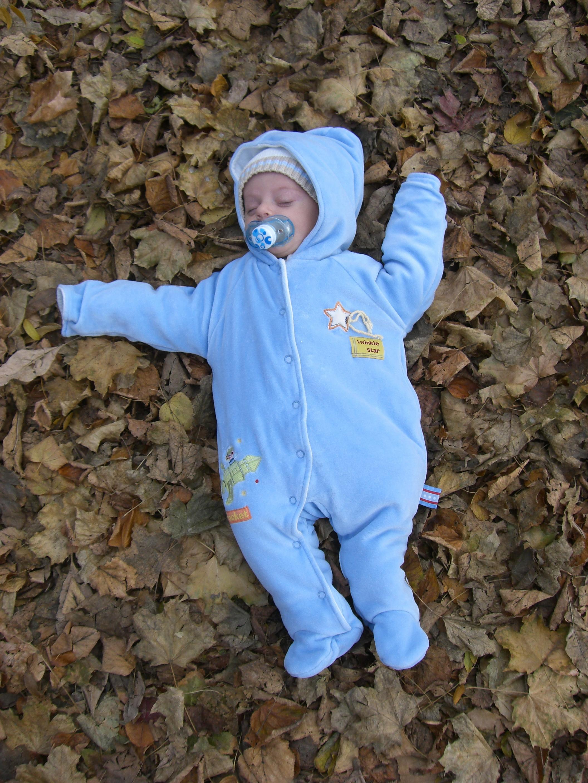 Fall time Harry.JPG.jpg