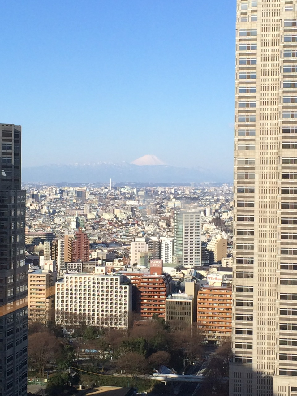 We were a little jet-lagged upon finally arriving at our hotel (after landing in Tokyo at 5am!) but were pleasantly surprised to have this view of Mt. Fuji from our window!