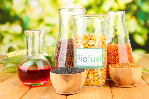 BiofuelTypes154759637.jpg