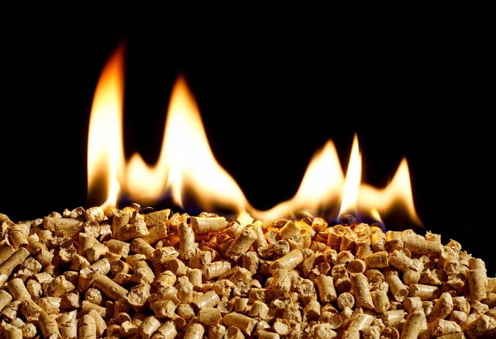 Burning wood chip pellets a renewable source of energy becoming popular as a green environmentally friendly fuel for stoves which provide household heating.