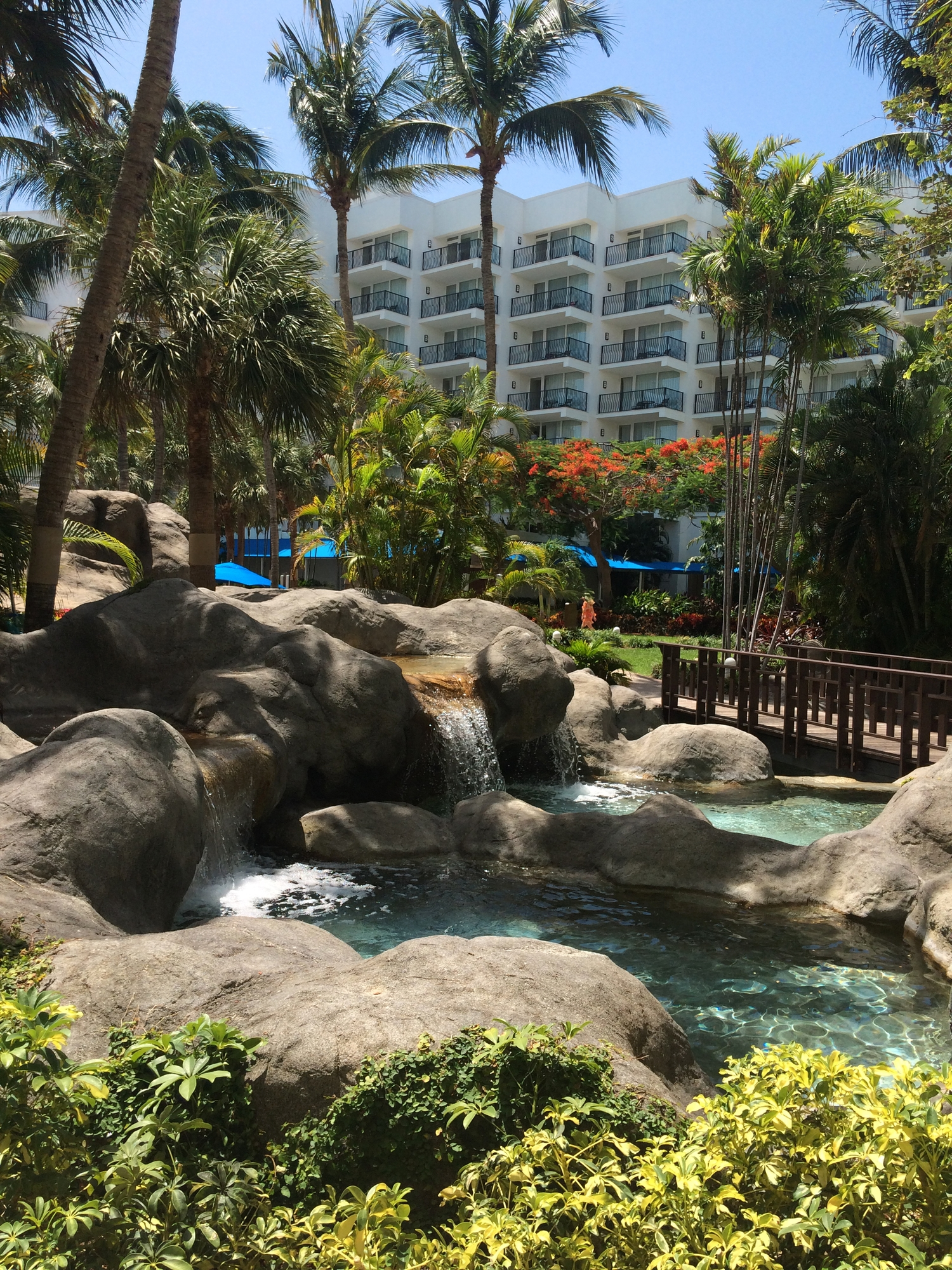 Beautiful view of the pool and waterfall in the Marriott