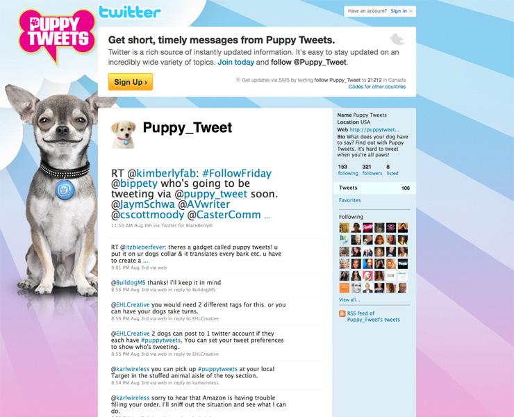 puppys1.jpg