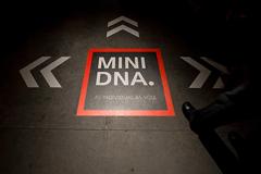 mini_dna_toronto_floor_graphic.jpg
