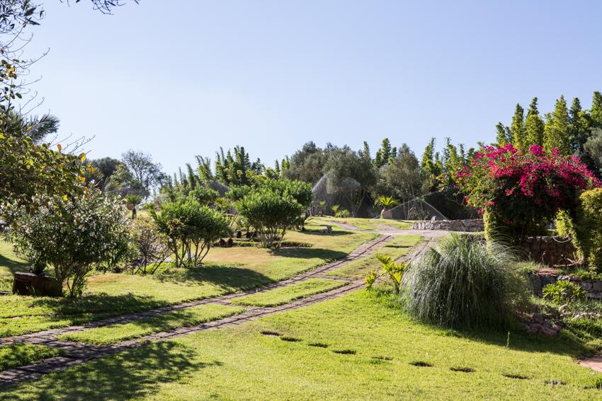 Arbres&Bambous.Cr-Sife.ElAmine-141643.jpg