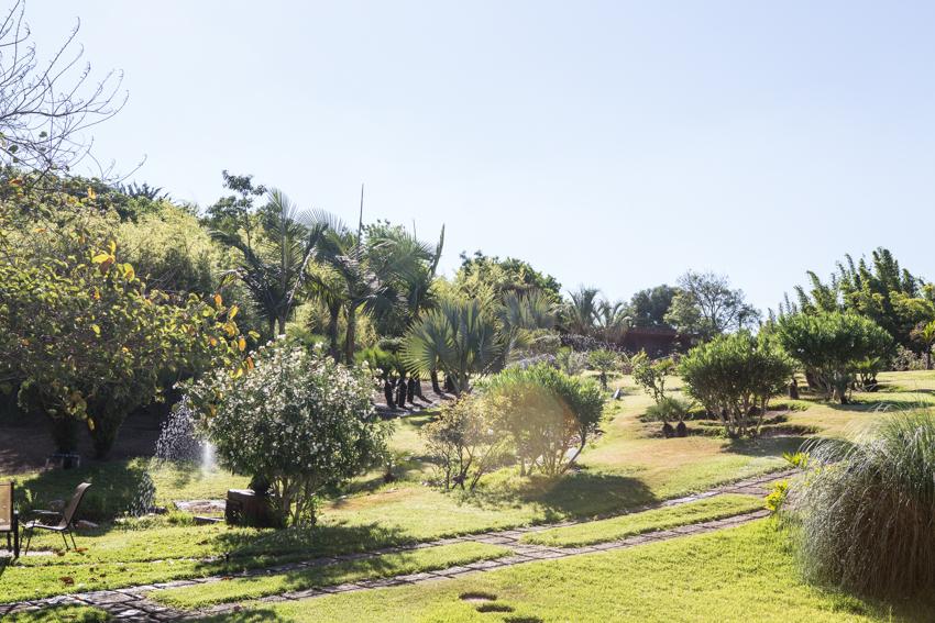 Arbres&Bambous.Cr-Sife.ElAmine-141663.jpg