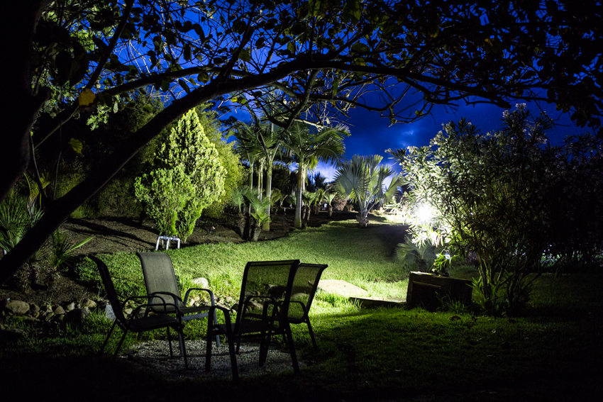 Arbres&Bambous.Nuit.Cr-Sife.ElAmine-141687.jpg