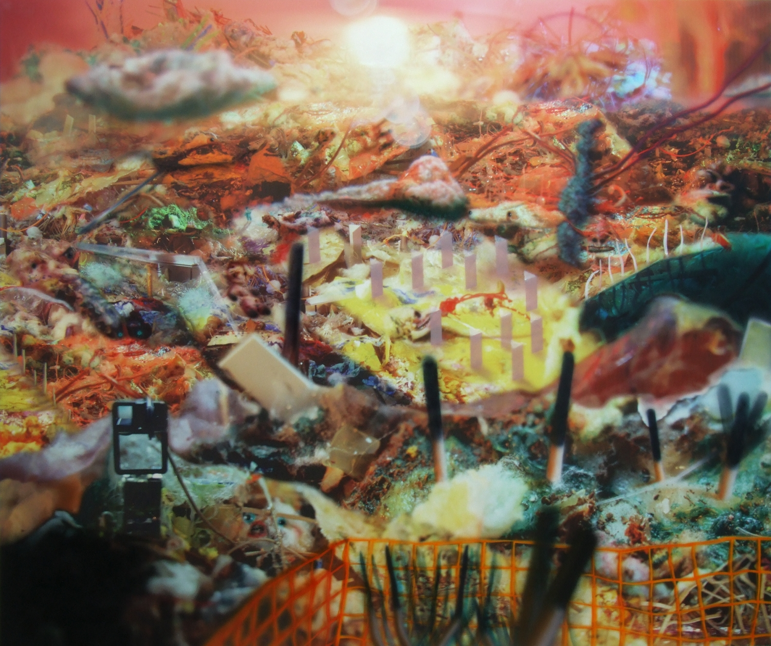 New-Nazca Looking at Itself  India ink and digital print on vinyl 59x50 inches 2011
