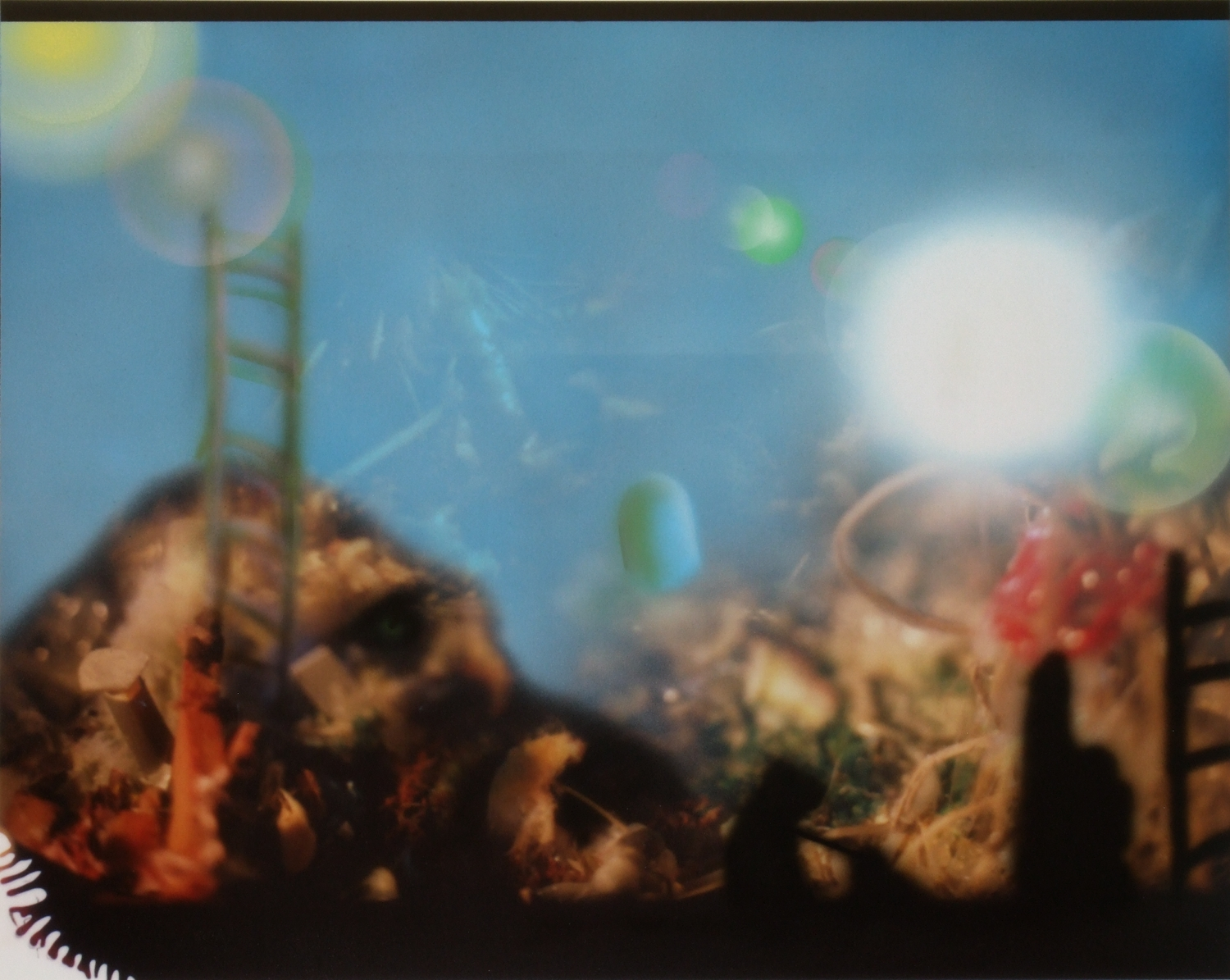 Horizons Living Memory Blotted Out   India ink on Chromira print  16x20 inches  2011