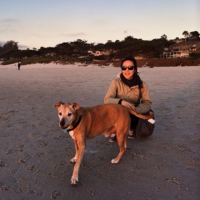 Bosco & @nabiya enjoying the last light of 2013.