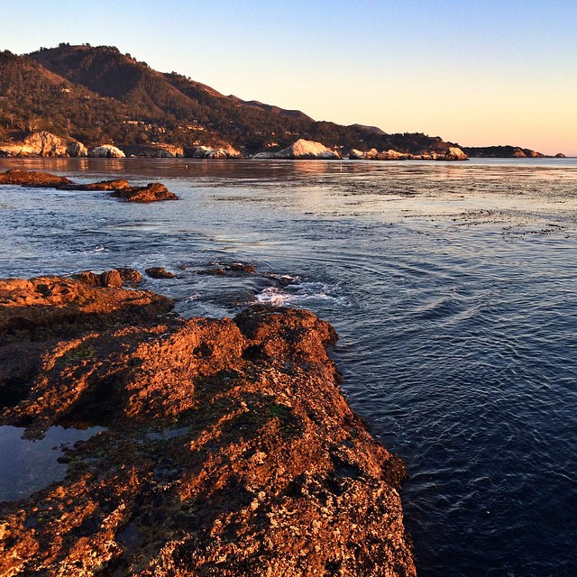 Gorgeous late afternoon light on the California coastline from Point Lobos. #ocean #carmel #monterey