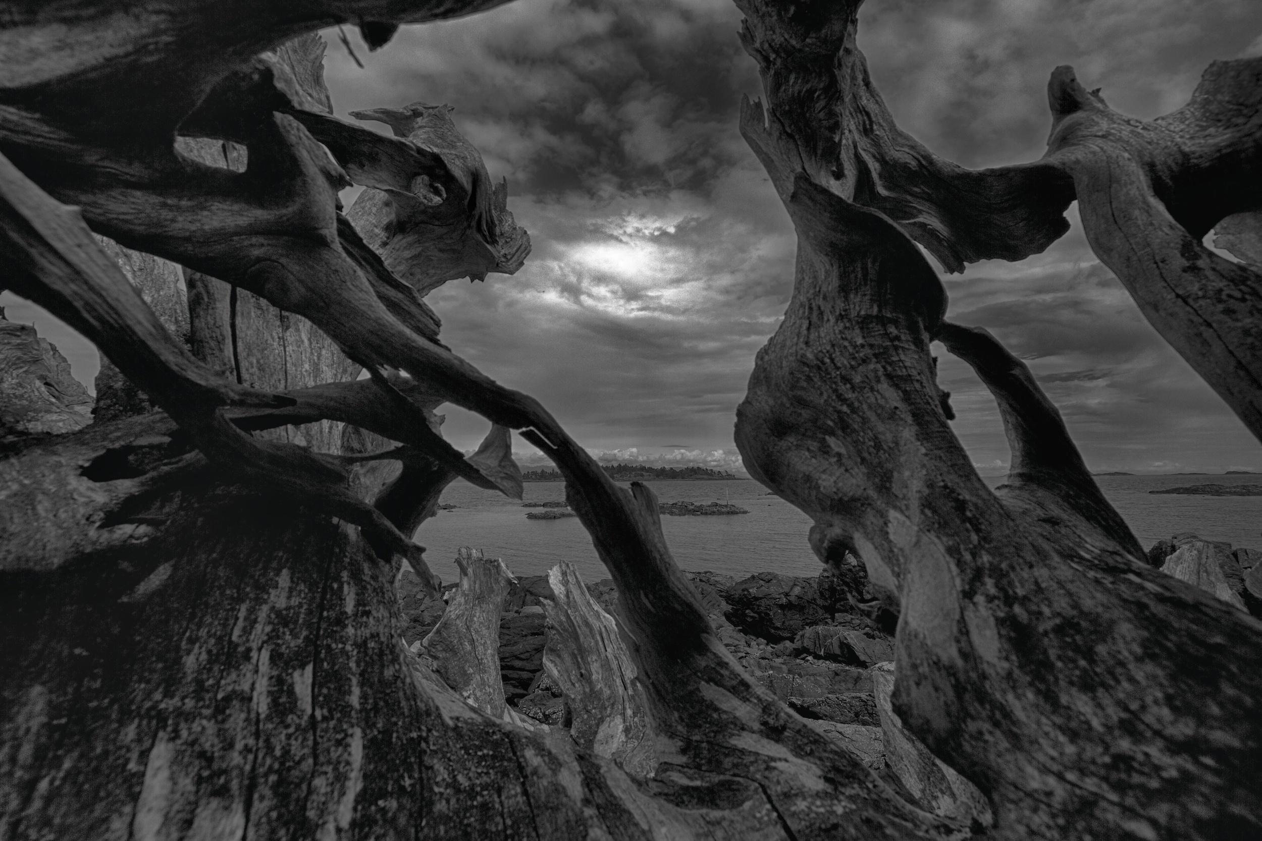 2014-06-20 at 14-49-56_HDR Nature, Driftwood, Black & White, Dragon, Sunset, Ocean, Moody, Dark, Sky.jpg