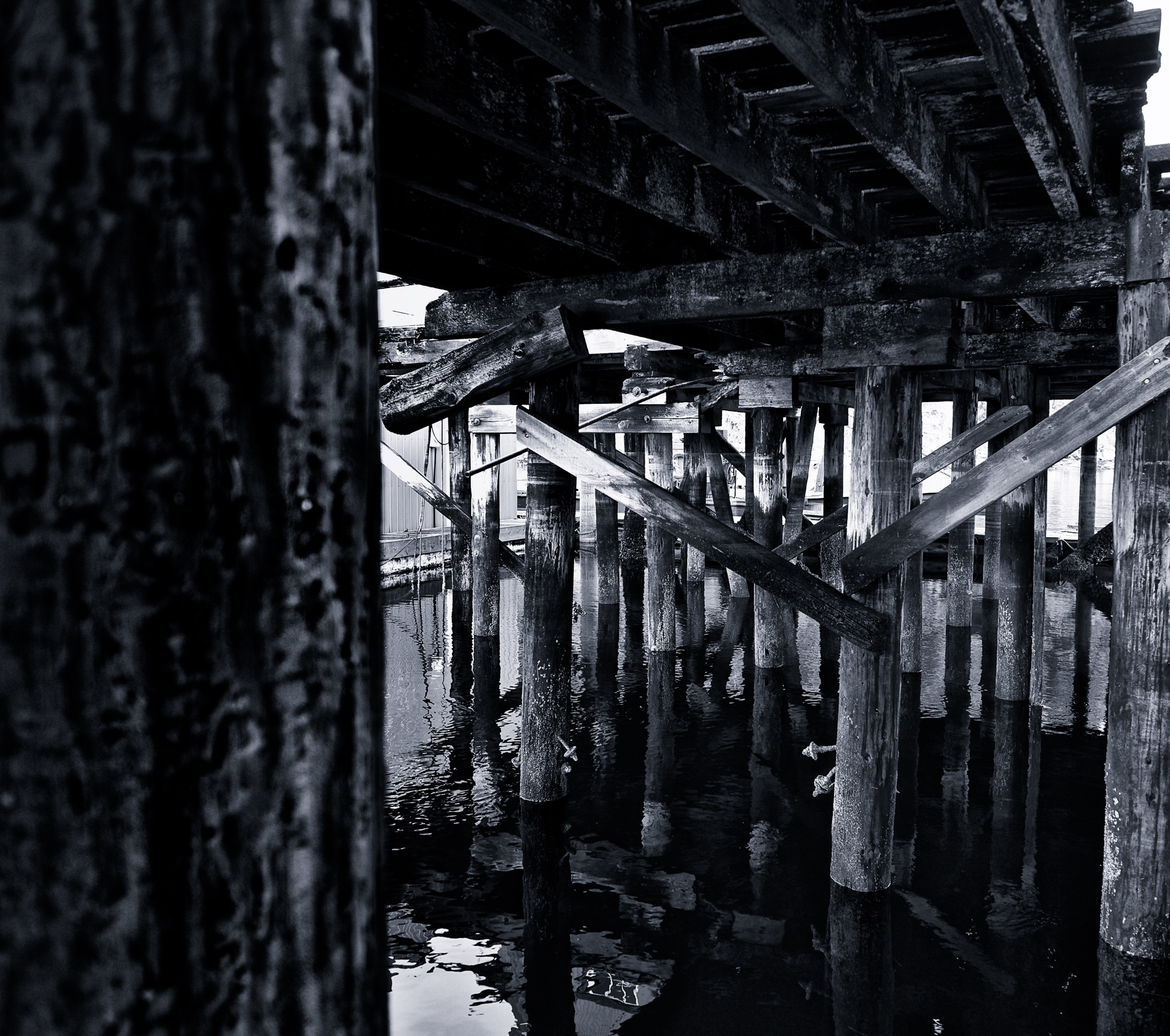 2014-12-25 at 15-32-46 Black & White, Dock, Marina, Ocean, Pier, Post, Urban, Water, Wood.jpg