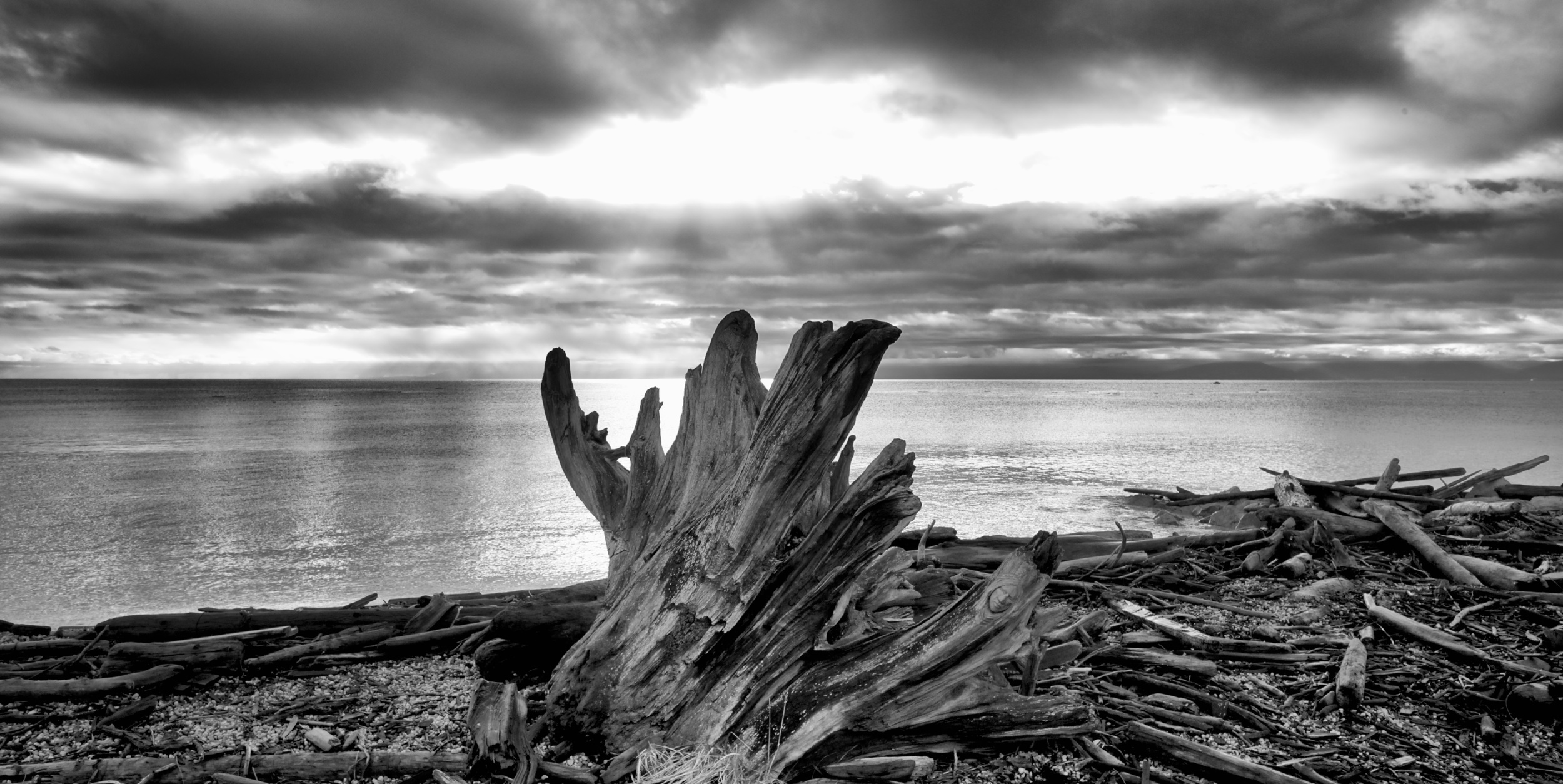 A driftwood stump looms over a silvery sea under dramatic skys. Fuji X-E2 XF 14mm at f/11 1/125 ISO 400
