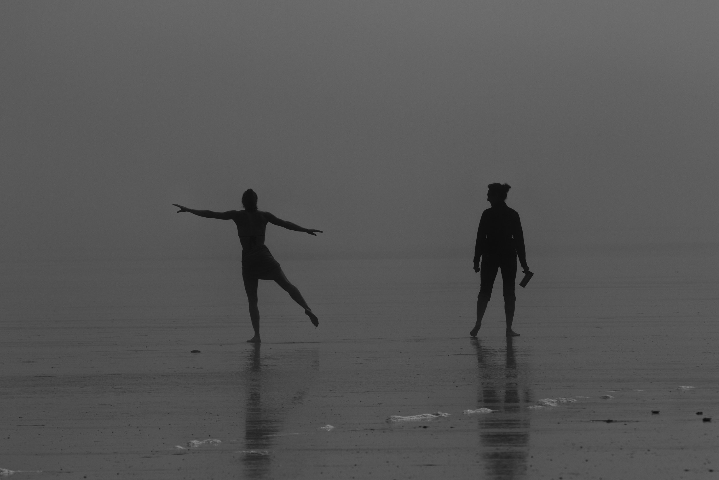Dancing in the mist on Long Beach. Canon 7D Mk. II EF 70-200 at 200mm 1/2000 f/5.6 ISO 100