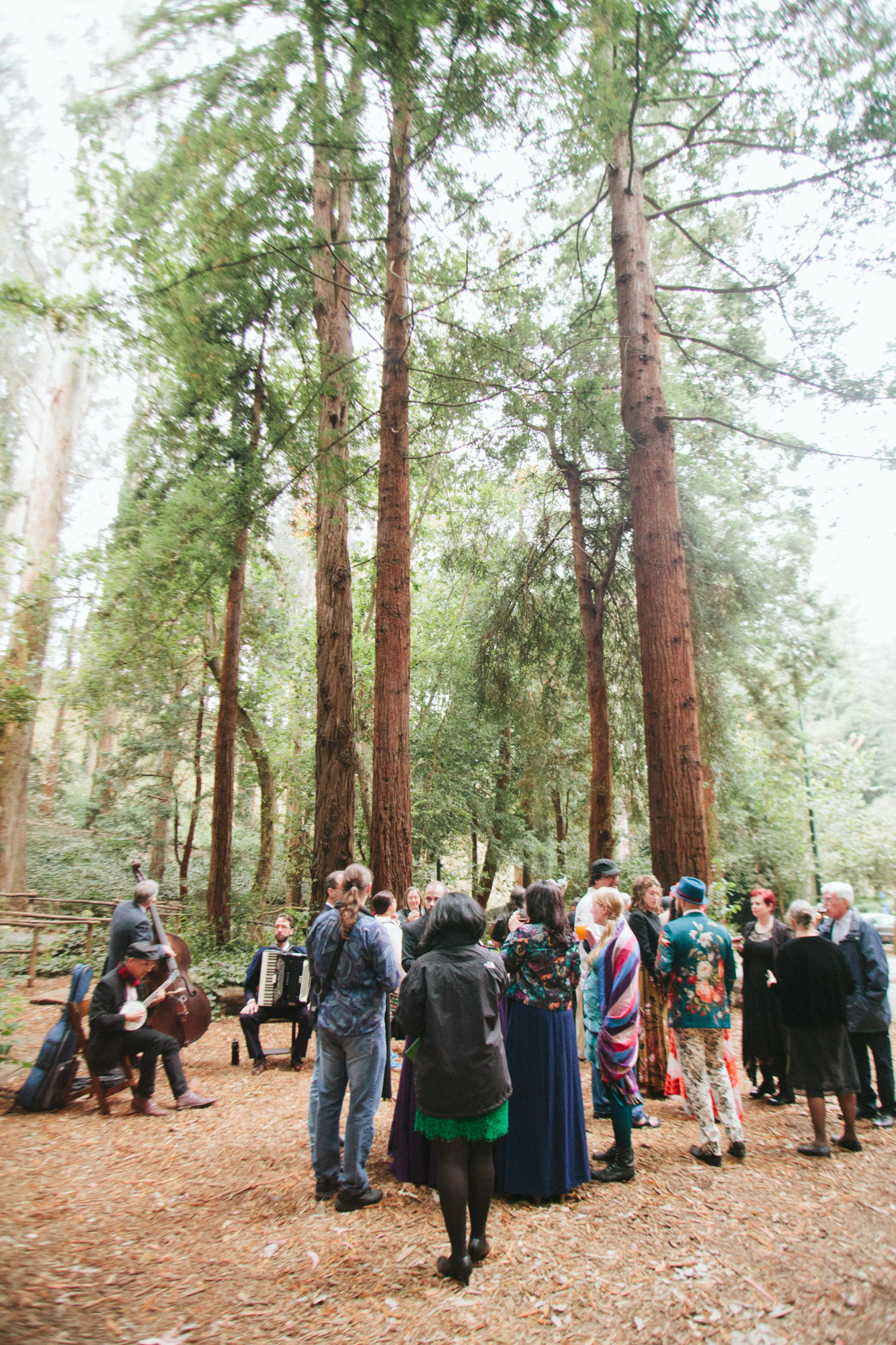 Wedding_Trocadero_house_Stern Grove_offbeat_San_Francisco-36.jpg