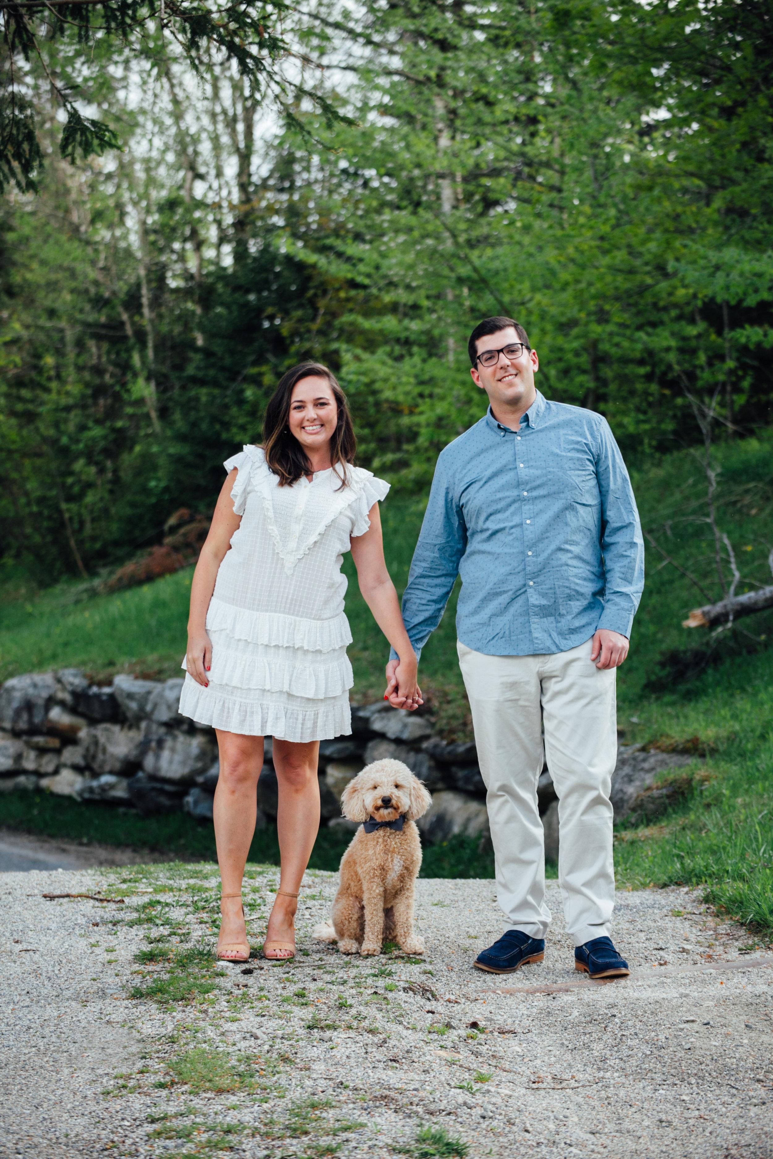 dog engagement photos vermont bowtie