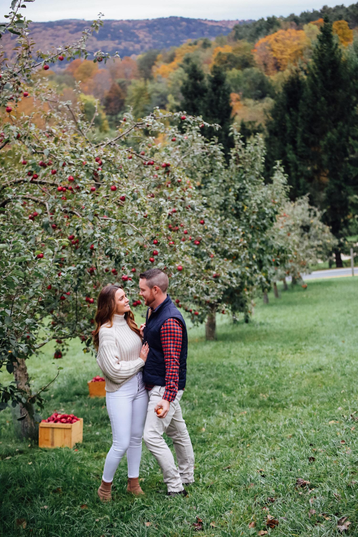 apple orchard engagement shoot vermont-12.jpg