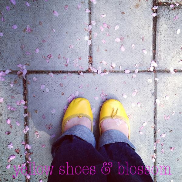 yellowblossom.jpg