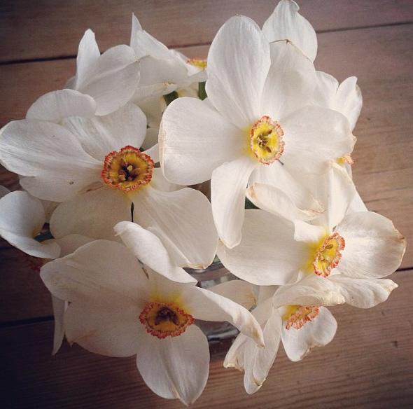 floralfriday 017.jpg
